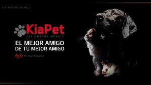 KIA PET: el mejor amigo de tu mascota