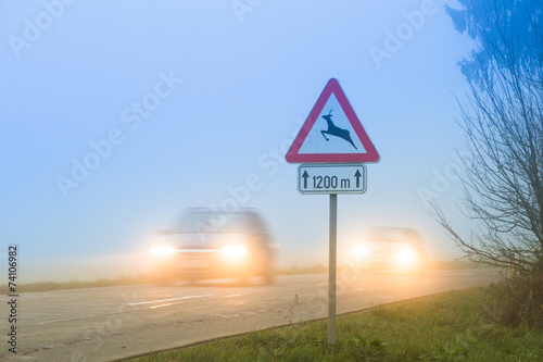 Deer crossing roadsign