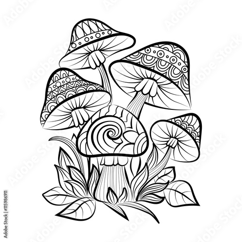 Hand Drawn Doodle Outline Mushrooms Vector Zentangle