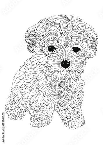 Bichon Frise Puppy Hand Drawn Dog Sketch For Anti