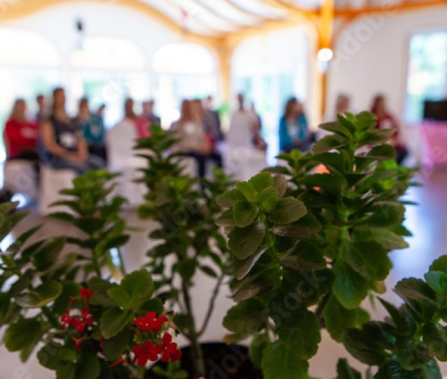 Group Of People Listening To A Conference In An Alternative Health Center As Seen From