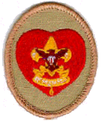Life Scout Rank Insignia