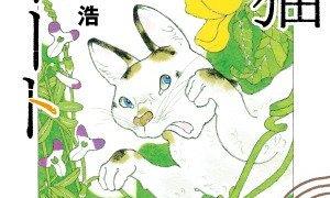 旅猫リポートのあらすじ・ネタバレと感想は!