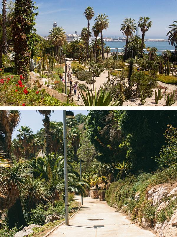 montjuic cactus park (7)