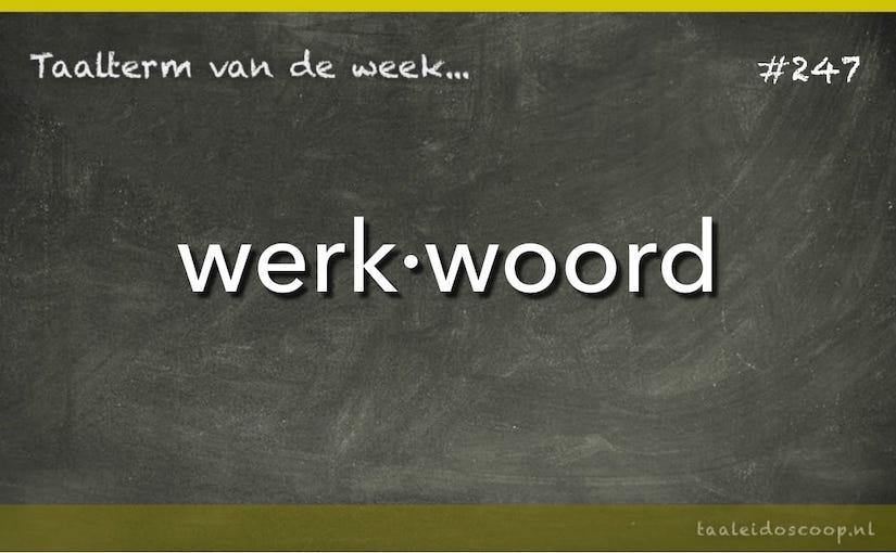 Taalterm van de week: werkwoord