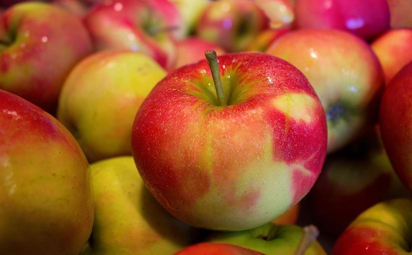 Kip, ei,appel