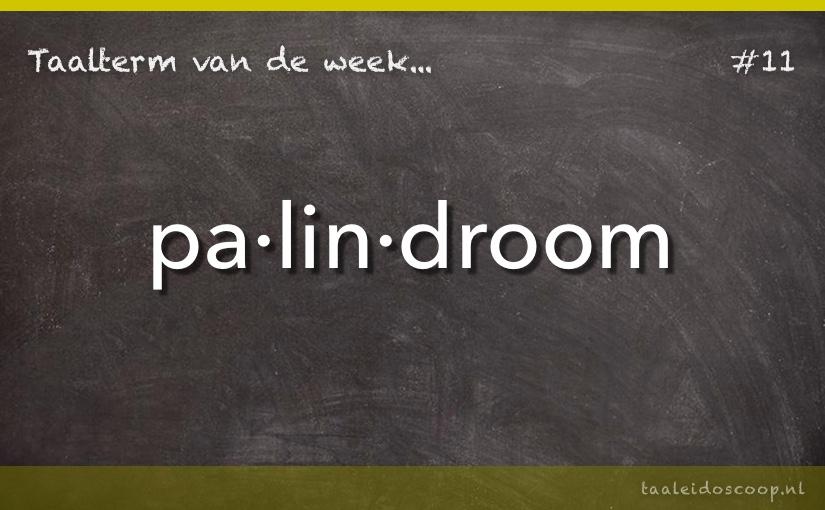 Taalterm van de week: Palindroom