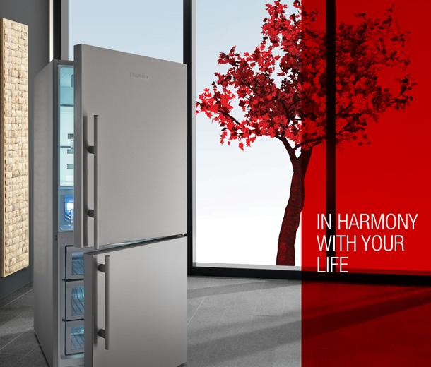 in_harmony_with_your_life_refrigerastos
