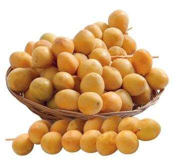 Fresh-Date-Fruits.jpg_350x350