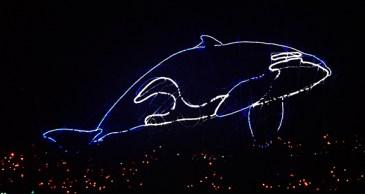 orca2