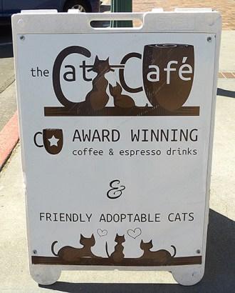 Cat Cafe sign1