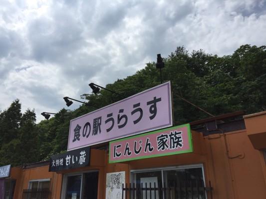 20160709michinoeki_252
