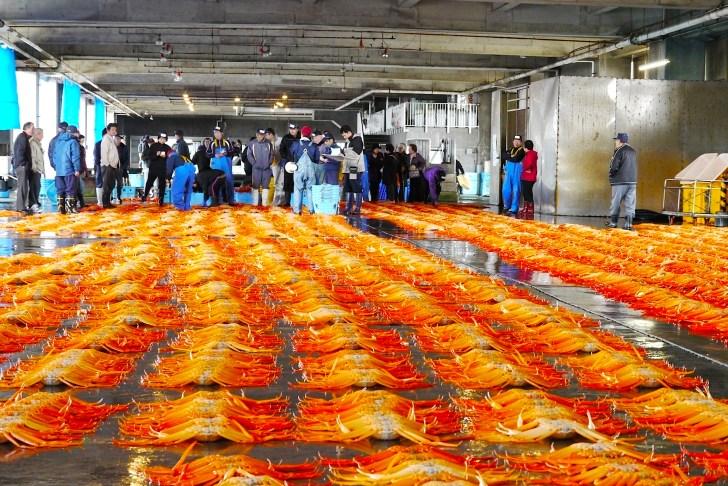 新湊漁港では、通常の魚市場で行われている早朝のセリだけでなく、13:00から昼セリも行なわれています(予約で見学も可能)
