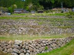 長江の棚田