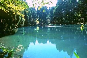 滝の頭水源地・滝の頭円形分水工