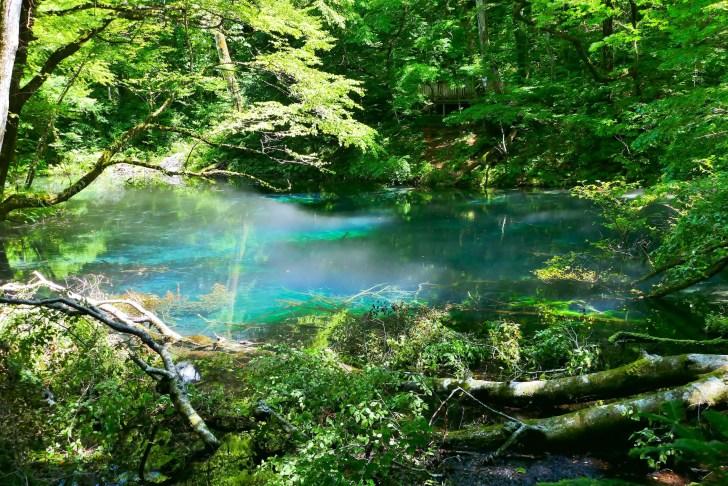 沸壺の池・沸壺池の清水