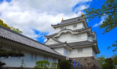 千葉県立中央博物館大多喜城分館(大多喜城)