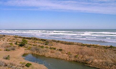 波崎海岸砂丘植物公園