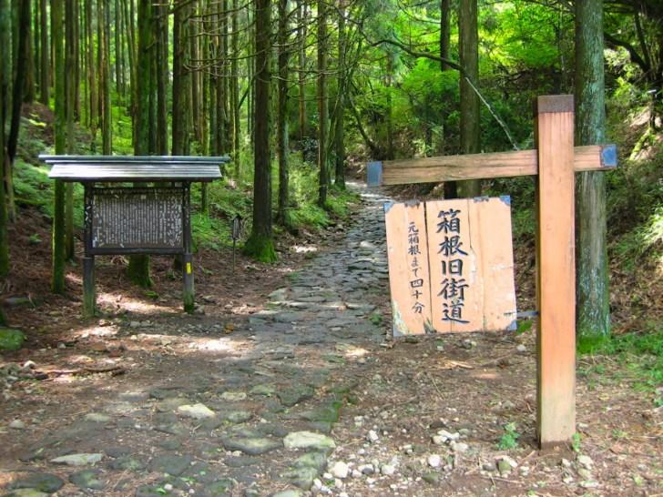 箱根旧街道石畳(東坂)