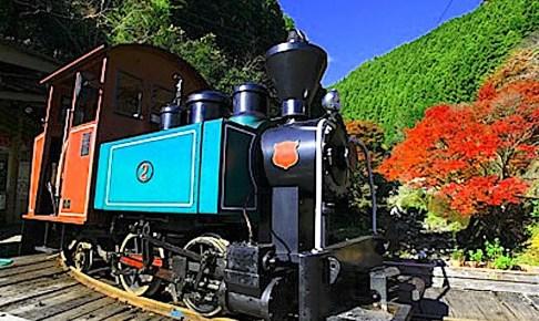 馬路森林鉄道