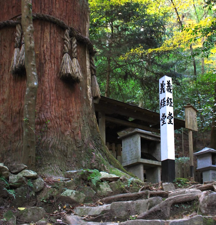 僧正ガ谷(不動堂・義経堂)