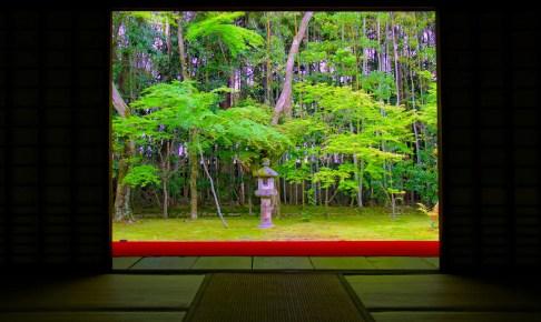 大徳寺・高桐院