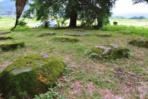 丹波国分寺跡