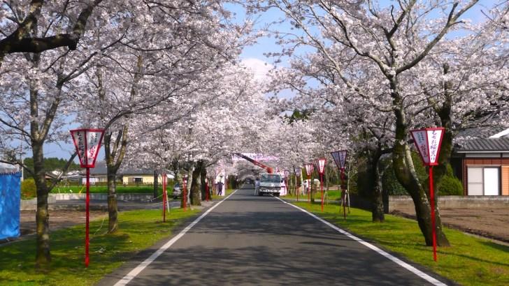 母智丘公園