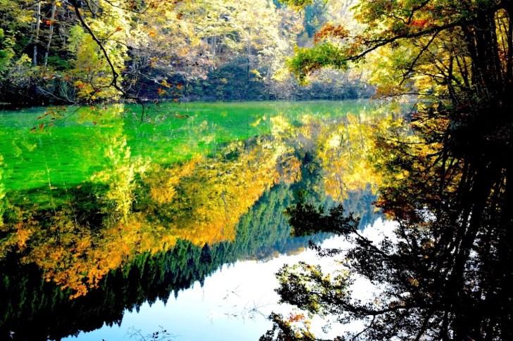 竜ヶ窪の池