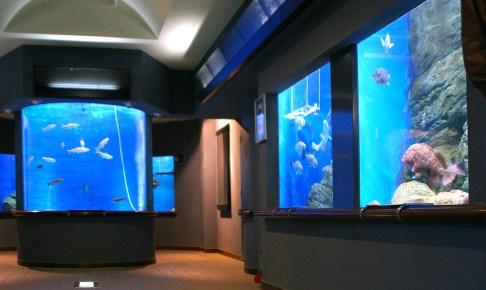 渋川マリン水族館(玉野海洋博物館)