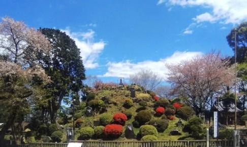 田子山富士塚(敷島神社)