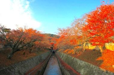 琵琶湖疏水第1トンネル東口