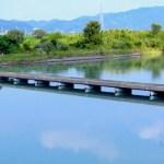 野神潜水橋