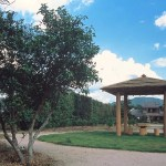 かんきつ公園