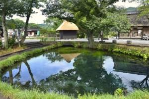 忍野八海・湧池