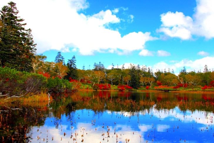 神仙沼・紅葉