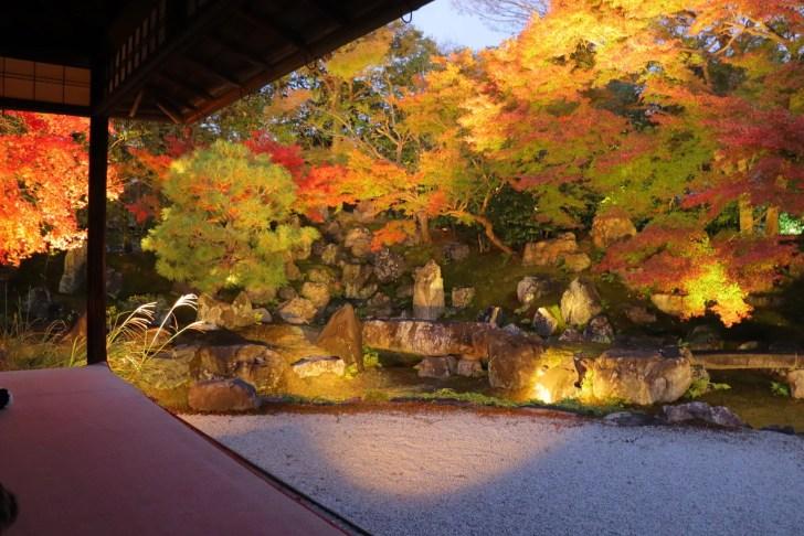 圓徳院『秋の特別展・夜間特別拝観』
