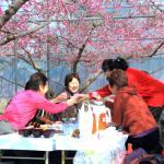 ハウス桃宴~日本一早いお花見~