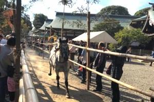 真清田神社『太々神楽・駒牽神事』