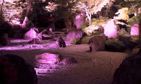 将軍塚青龍殿『夜間の特別拝観・秋』
