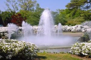 白つつじ公園『白つつじまつり』