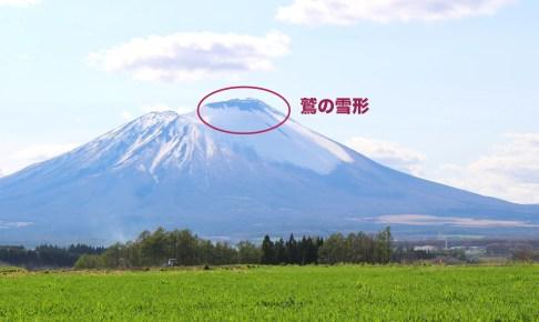 岩手山「鷲」雪形