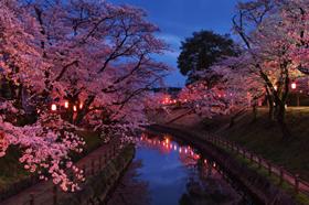行屋川桜まつり