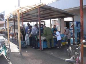 深日漁業協同組合 魚市場