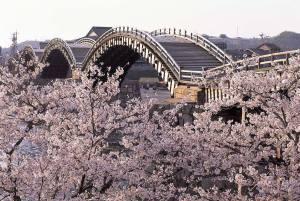 錦帯橋・吉香公園