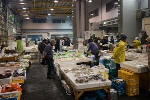 伊里漁業協同組合 真魚市