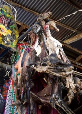 ペルーのシャーマンの儀式での供物