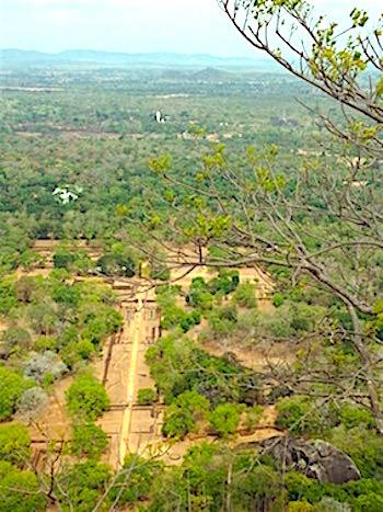 シギリヤロック頂上からの眺望画像
