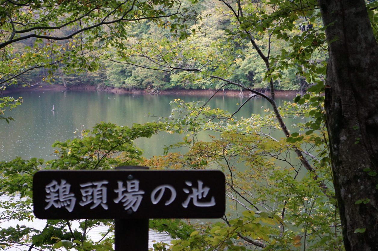 鶏頭場(けとば)の池