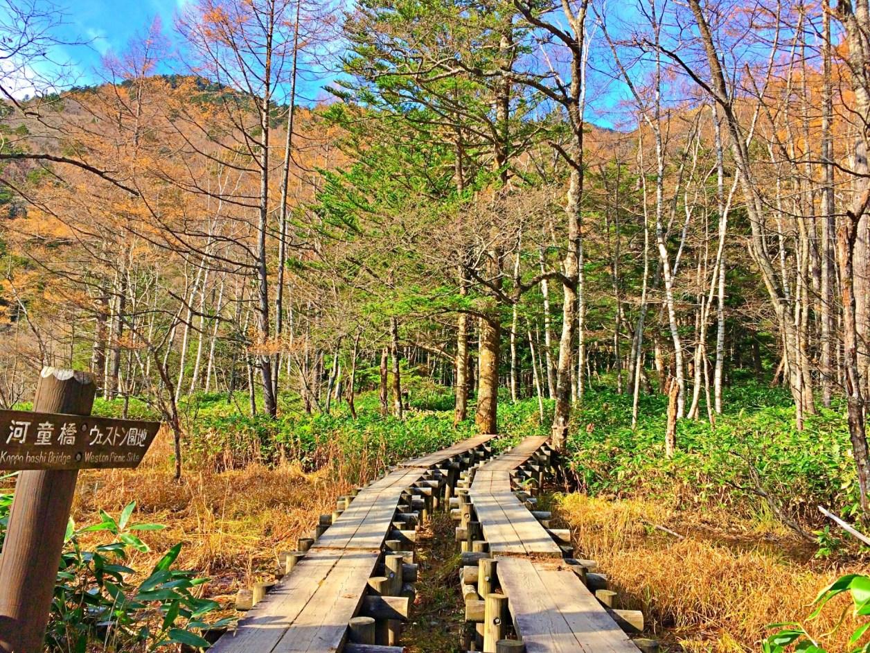 上高地 散策路 紅葉